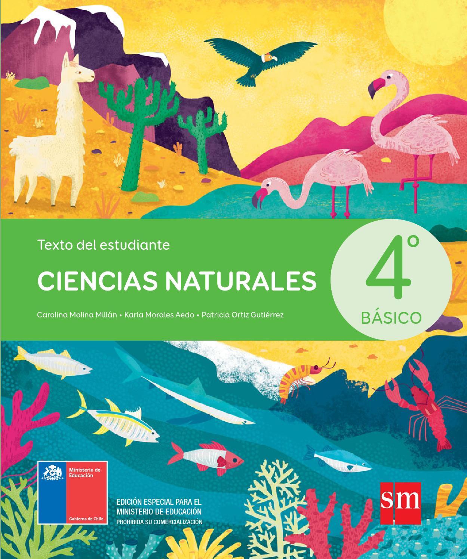 ciencias naturales 4 basico sm pdf