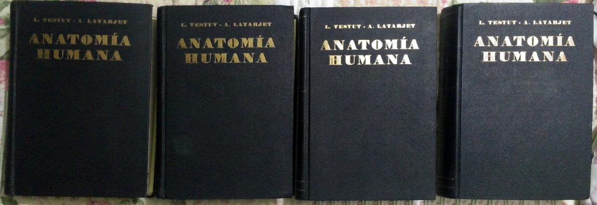 anatomia humana testut pdf descargar
