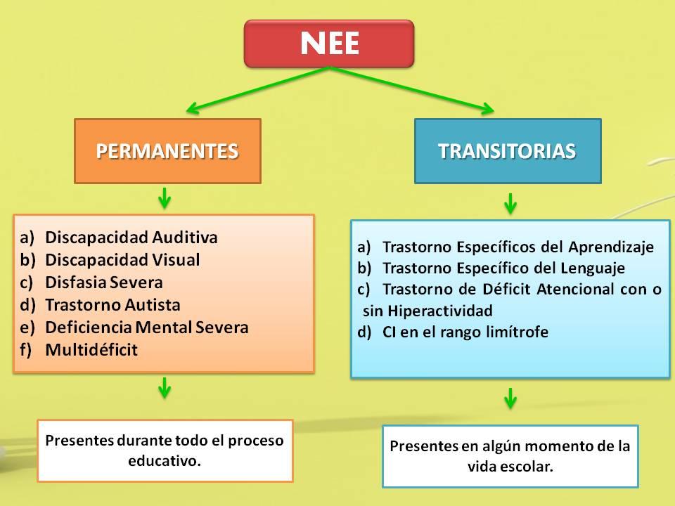 clasificacion de las necesidades educativas especiales pdf chile