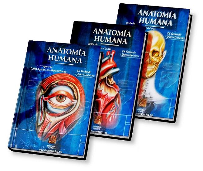 anatomia humana latarjet pdf tomo 1