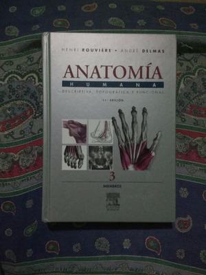 anatomia humana rouviere 11 edicion pdf