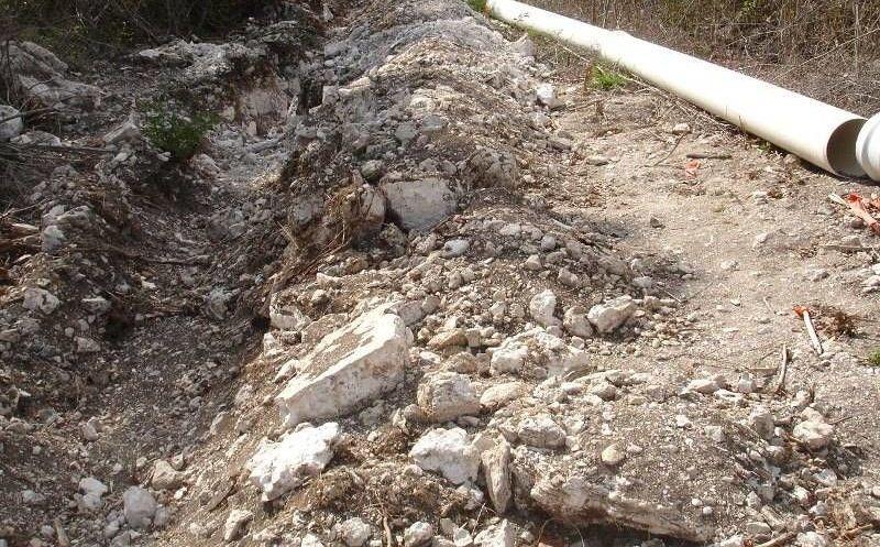arvejas condiciones optimas de suelo