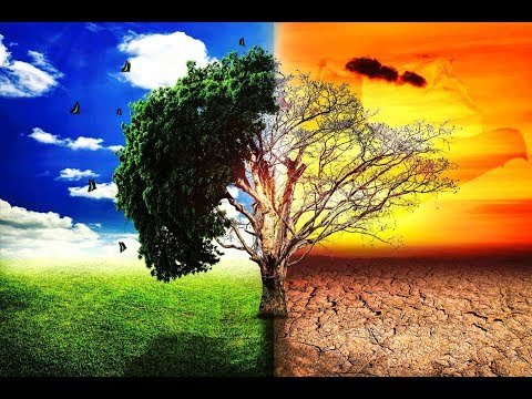 cambio climatico en chile 2019 pdf