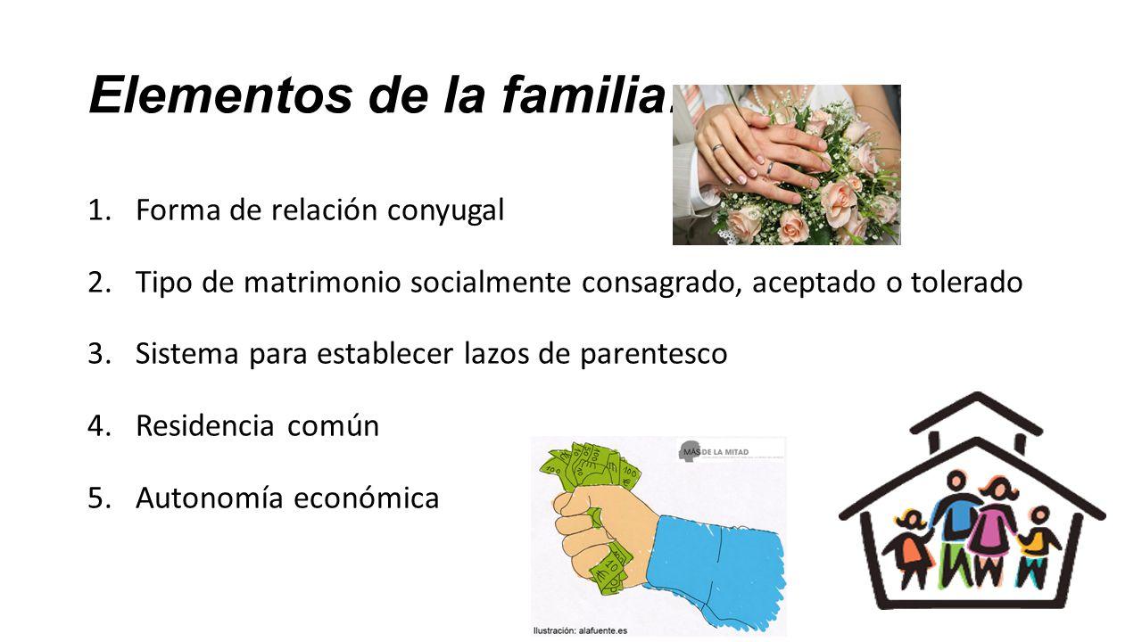 definicion de familia homoparental pdf